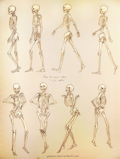 kim-am-i:  Single Ladies Skeleton Study by `yuumei Whaat? Mindblown.
