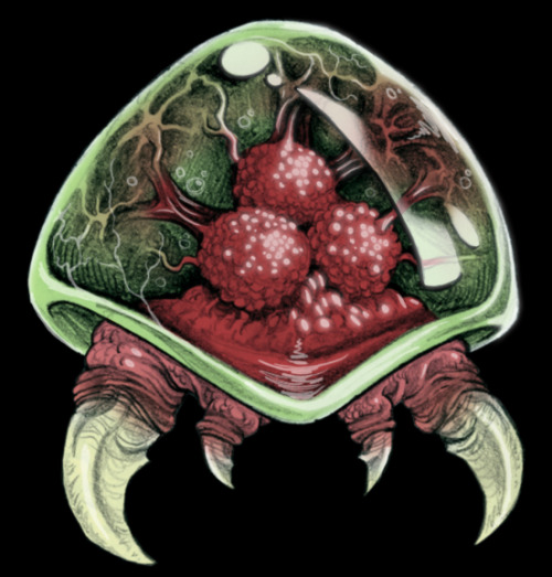 Species: Metroid - by Bryce Corbett