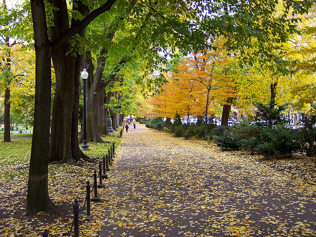 b1ackboy:  Autumn in Boston by glenndecesare on Flickr.
