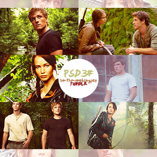 im-the-mockingjay:  The Hunger Games PSD. Please Like/Reblog if you use/like it, thanks !!:)