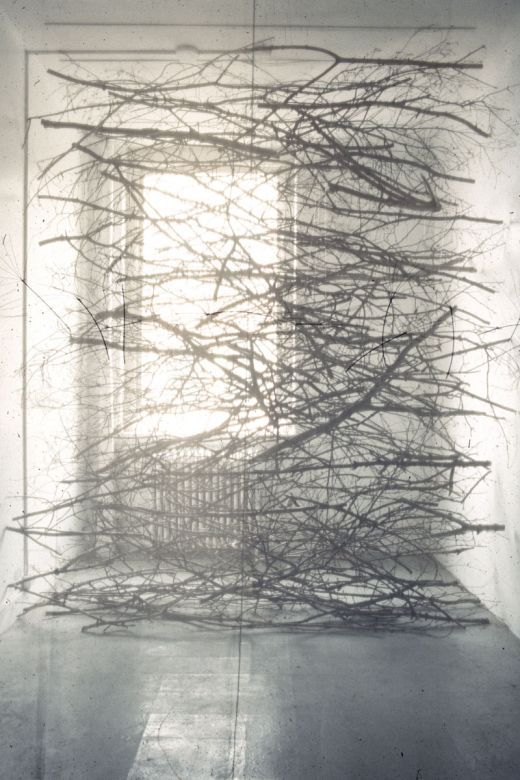 fyeahwomenartists:  Maren HassingerVeil Fabric, branches, wire rope 1987