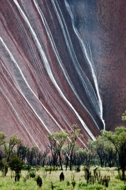 Rain in Uluru, Australia (via Beautiful places)