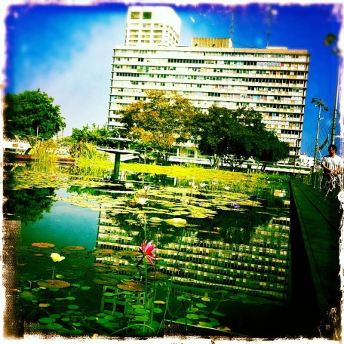 #telaviv #mypic #cityhall #pool #instagram #tumbler #Monday #October #today #city #citysmile #city #corner #rest #100 #10 #1  (Taken with instagram)