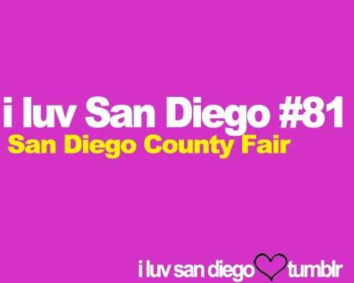 The San Diego County Fair comes every summer. Starting in June and ending on July 4th. The San Diego County Fair is the highlight for every man, woman, and child.  Best thing I had at San Diego County Fair: fried butter :)