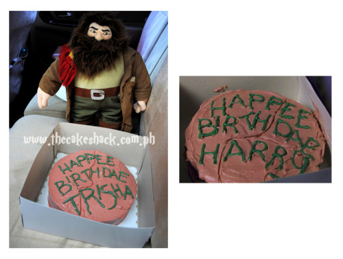 Harry Potter's 11th birthday cake we baked for a harry potter dork :)