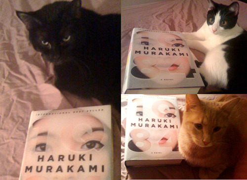 aaknopf:  The finished edition of 1Q84 has landed at Knopf! We quickly got a copy to some of our most trusted beta testers to make sure that the books look, feel, and—most importantly—taste perfect when they go on sale on 10/25.  i should really pre-order a copy. not a cat that would be silly
