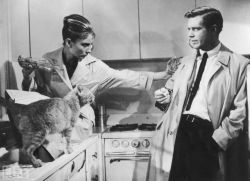life:  Audrey and George Peppard — In one of her most beloved movies, Breakfast at Tiffany's, Hepburn plays a party girl who befriends her writer neighbor. Naturally, by the end of the movie, they're in love. On the 50th anniversary of Breakfast at Tiffany's, we're looking back at Audrey Hepburn's Hunky Leading Men   Life is a treasure trove. I could while away hours and hours on life.com.