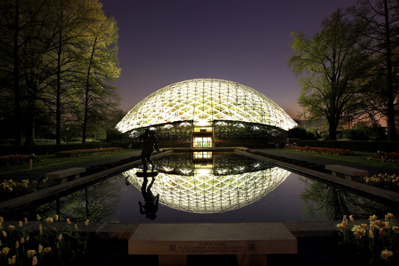 The Climatron at the Missouri Botanical Garden celebrated its 50th anniversary in 2009. Construction began at the garden in 1959, and cost $700,000 — almost double the projection. Today, it provides cover for 2,800 plants, including palm trees, devil flowers, spider lilies and orchids. (Photo by Johnny Andrews / jandrews@post-dispatch.com)