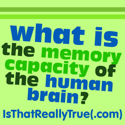 Scientific American: What is the Memory Capacity of the Human Brain?