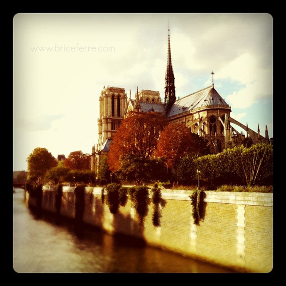 Notre-Dame, Paris, France. Email Us / Check my Portfolio / Follow me on Facebook / Follow me on Twitter / Follow me on Instagram /