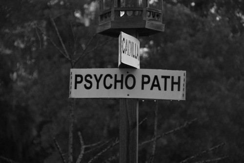 stormageddon-darklordofall:  bbcsherlockftw:    #It's not a psycho path it's a high-functioning socio path do your research