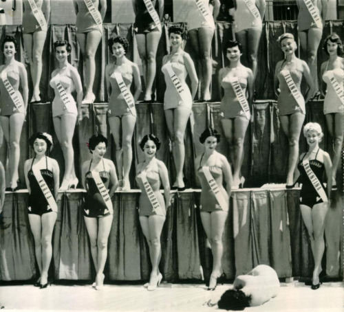 vintagegal:  Miss Universe Pageant 1954- Miss New Zealand passed out from the heat