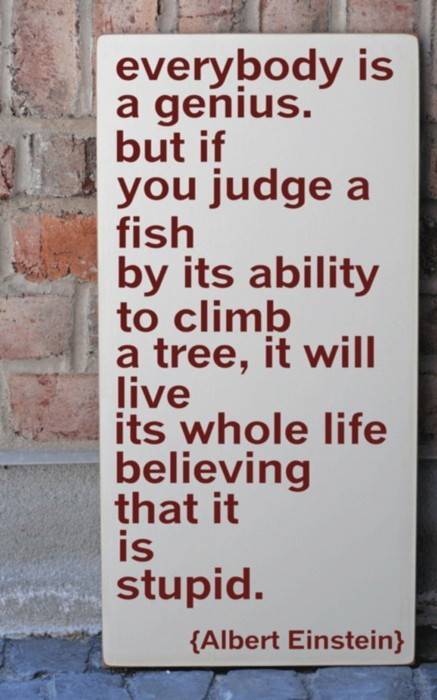 Everybody is a genius. But if you judge a fish by it's  ability to climb a tree, it will live its whole life believing that it is stupid (Albert Einstein)