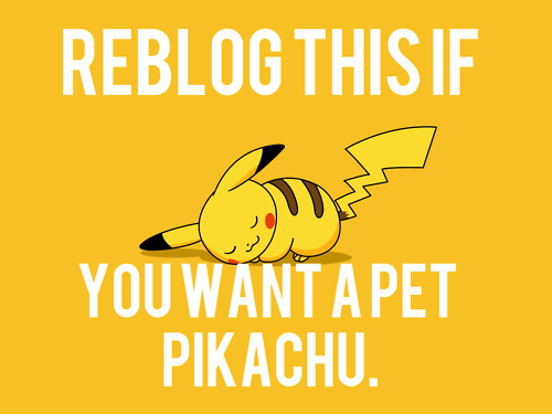 rebecizzle:  suklaaraichu:  And then I would evolve it someday! I want pet Raichu really bad! BUT pet Pikachu would be awesome too…  I would fucking bribe Kwangmin with this.