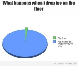 What happens to ice when you drop it. #FACT