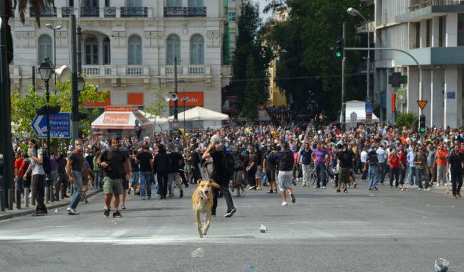 rebeldog:  5 oct 2011, ATTACK!!! photo by @epocalibera