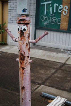 GOOGLY EYE CREW - Portland, OR on Flickr.Via Flickr: Daily Graffiti Photos and Street Art Culture… www.EndlessCanvas.com Follow us… Facebook, Tumblr, YouTube, Twitter