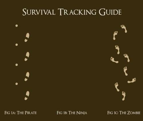 usadbifocales:  tracking guide.     I will use this for the rest of my life…