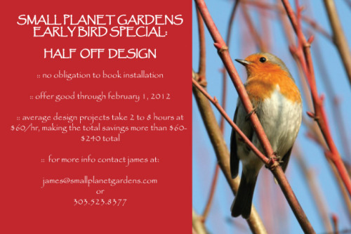 Great offer to get you started on your dream garden!