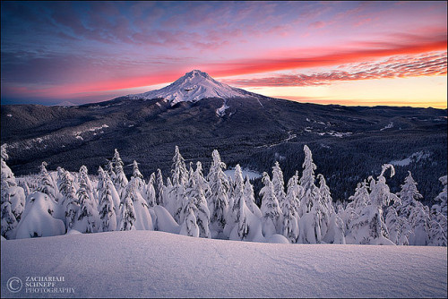ind00rsy:  Electric Winter by Zack Schnepf on Flickr.