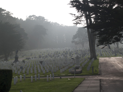 No. 96: VIEW National Cemetery at the Presidio in San Francisco.