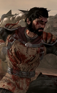 Dragon age 2 screen shot