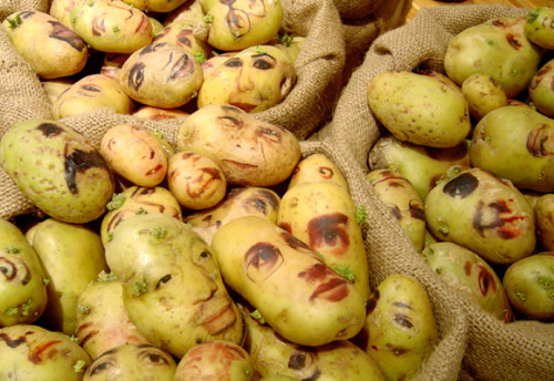 Beautiful potato portraits by Ginou Choueiri