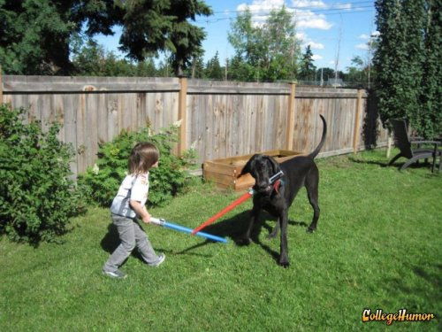Kid and Dog Lightsaber Battle He's more dog than man now.
