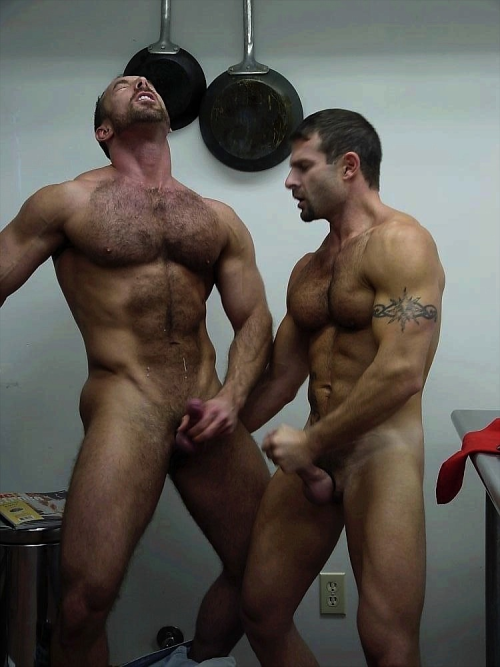 #Gay_Sex in the #kitchen     ||  #HunkFinder  ||
