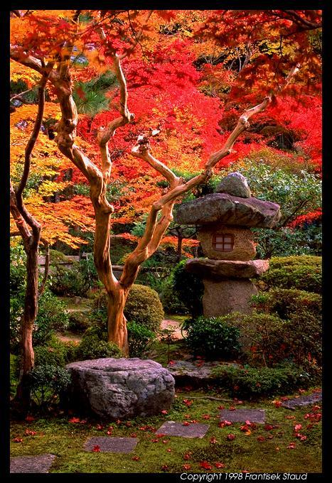 Garden of Enkoji temple, Kyoto (via Kyoto)