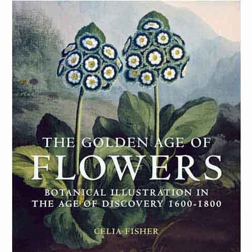 scientificillustration:  The Golden Age of FlowersBotanical Illustration in the Age of Discovery 1600-1800The 17th and 18th centuries saw a 'flowering' of botanical illustration and witnessed the production of some of the greatest books of plant illustration ever produced, including such outstanding examples as the Hortus Eystettensis, the work of Maria Sybilla Merian, Thornton's Temple of Flora, Banks's Florilegium and Sibthorpe's Flora Graeca.During this period several developments took place that led to a significant increase in the popularity and output of botanical illustration. The first was the development of the process of engraving on metal in the 1600s, which revolutionised illustration. The second was the development of the new Linnaean system which was helped, in part, by the high quality of illustrations produced at the time. The third significant development was the epic voyages of discovery which recorded and collected the exotic plants encountered in remote uncharted lands.In this lavishly illustrated new book, Celia Fisher has selected over 100 of the most beautiful flower images from this period. The flowers are arranged in alphabetical order, and the text that accompanies them outlines their origin, the derivation of their name and the properties for which they were most valued. This beautiful new book will appeal to anyone with an interest in botanical history and illustration, and flowers and gardening.About the authorCelia Fisher is a renowned expert on flowers and fruit in art and books. She is the author of Flowers and Fruit (National Gallery, 1998), Still Life Paintings (Vadi, 2000), Flowers in Medieval Manuscripts (British Library, 2004) and The Medieval Flower Book (British Library, 2007).  christmas