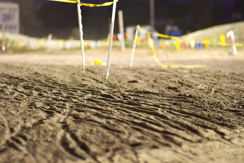 Tracks of someone's tears (of joy?) Photo: Event Recap: Dirt Derby Week 02 by John Prolly on Flickr.