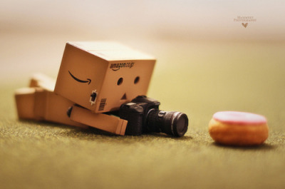 danbo pictures are always so cuteeee<3