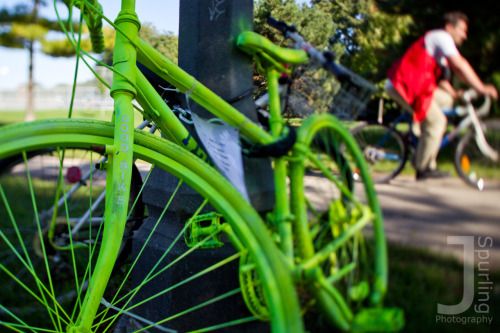 Lime Bike. Trinity Bellwoods Park