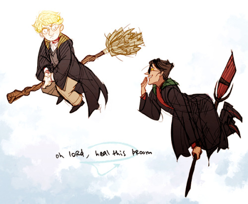 don't think they'd care for quidditch, just hanging out in the sky nbd also i'm not gonna lie i do personally think crowley is more of a gryffindor but