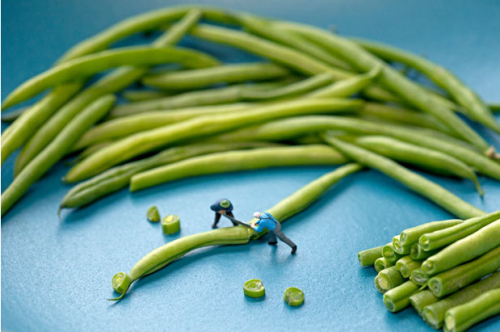 Disparity by Christopher Boffoli: miniature scenes created using food and toy figuresvia The Telegraph