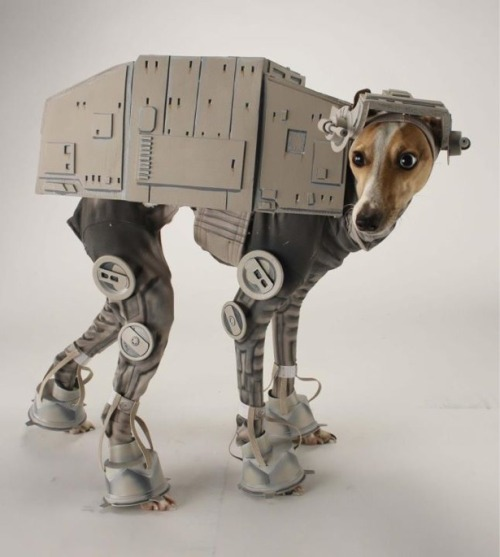 Star Wars AT-AT Dog Costume via laughingsquid