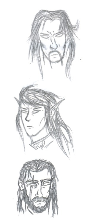 Here are some drawings I made about a medieval fantasy story. A human, an elf, and a half-elf. PS: I still have to work on perfecting the eyeballs…