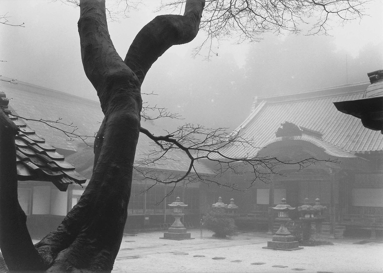 melisaki:    Temple And Tree, Hiei-San, Kyoto photo by Paul Caponigro, 1976