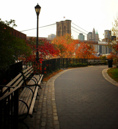 "Autumn in New York City. A view overlooking the Brooklyn Bridge. Brooklyn Bridge Park. Dumbo, Brooklyn.  On overcast autumn days, clouds cover the city in a dreamlike haze, wrapping everything in shades of grey and melancholy. Colorful trees and structures awaken the slumbering city from its somnambulistic state.  These last attempts of awakening are the ones remembered vividly before the winter's shades of solitude set in only interrupted by bare branches and cool steel until the city fully awakens in the spring again.    —-  View this photo larger and on black on my Google Plus page   —-  Buy ""Autumn Overlooking the Brooklyn Bridge - New York City"" Posters and Prints here, View my store, email me, or ask for help."