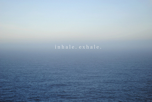 inhaleexhalebreathesteady:  fluffysock:  (by ▲melanie)  breathe steady.