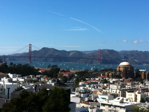 stunning Fall day in san francisco