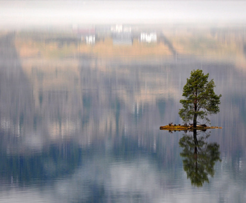Beautiful little island with a lonely tree and a magic reflection by ystenes on Flickr.