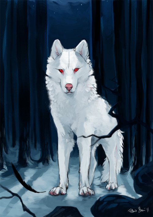 "Spettro Jon Snow's albino direwolf Ghost from ""A Song of Ice and Fire"" series. I really like this saga (I've just finished the first one) despite the amount of favorite characters that continue to die every now and then (If Arya dies I will have to strangle someone) Highly inspired by my favorite artists on the interwebz: akreon , sandara and kundagi (she has a tumblr too!). For every leaked spoilers a Stark dies so please be considerate!"