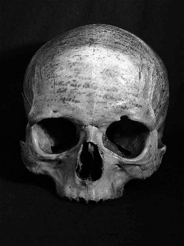Descartes's skull, covered in writing.