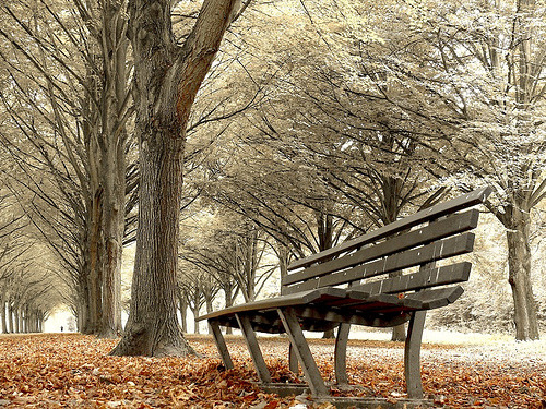 just-breezy:  have a seat (by larsvandegoor.com)