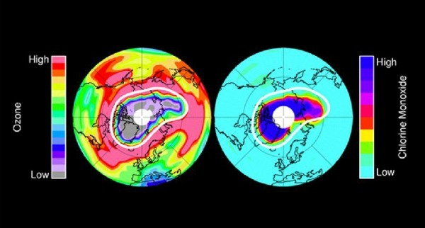 "As NASA writes: ""In mid-March 2011 MLS measured very low ozone amounts (purple and grey colors over the north polar region) at an altitude of approximately 12 miles (20 kilometers). Large amounts of chlorine monoxide - the primary agent of chemical ozone destruction in the cold polar lower stratosphere - were observed for the same day and same altitude (dark blue colors). The white line marks the area within which the chemical ozone destruction took place."""