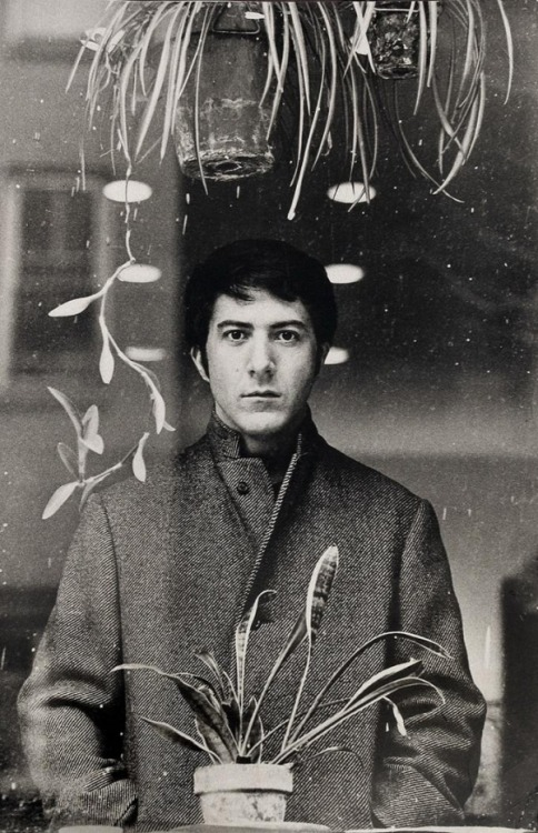 Dustin Hoffman, 1960s, photo by Terry O'Neill -via i-like-films