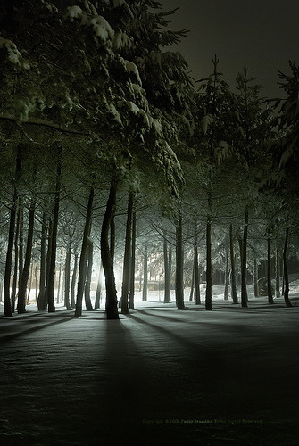 Frozen light in a snow weekend, Manzaneda (by Paulo Brandão)