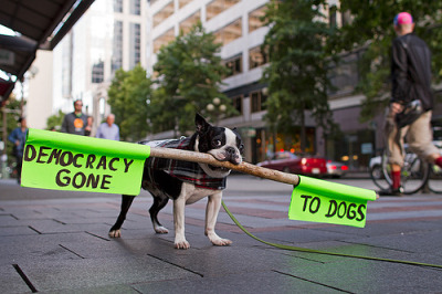 annarellix:  occupy seattle (by craig_coonrad)
